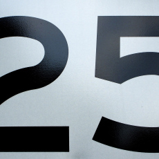 number twenty five on a white background