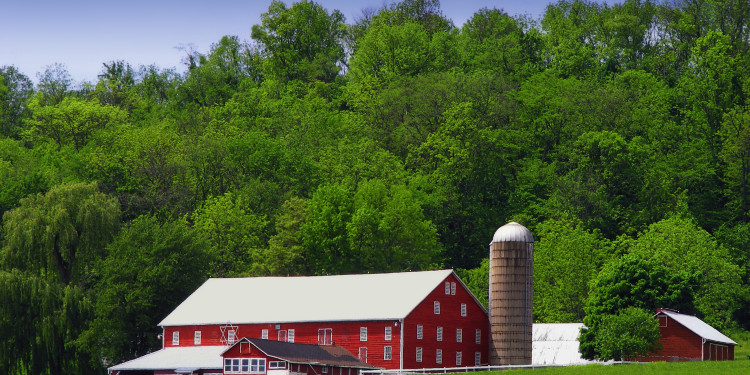 Red Barn on green field with trees and blue sky